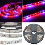 1M 2M 3M 4M 5M 5:1 5050 SMD LED Hydroponic Plant Grow Strip Light 12V