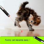 Laser Funny Cat Stick 2 In1 Red Laser Pointer Pen With White LED Light Childrens Play Cat Toy
