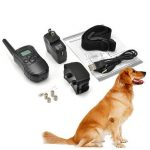 PET-998DR-1 Rechargeable Waterproof Remote Pet Training Collar